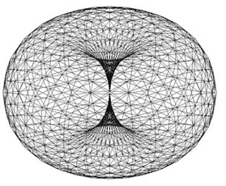 wireframe torus shape with zero point middle