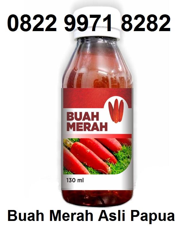 khasiat jual buah merah asli asal dr papua irian jaya info lengkap