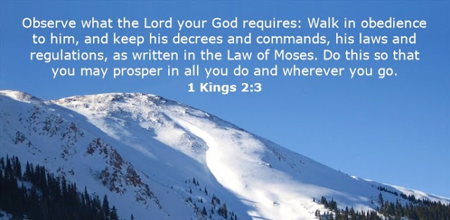 Observe what the Lord your God requires: Walk in obedience to him, and keep his decrees and commands, his laws and regulations, as written in the Law of Moses. Do this so that you may prosper in all you do and wherever you go.