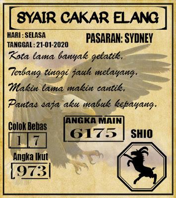 SYAIR SYDNEY 21-01-2020