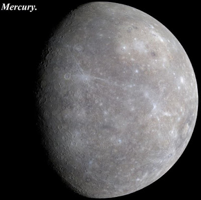 Mercury_bio data