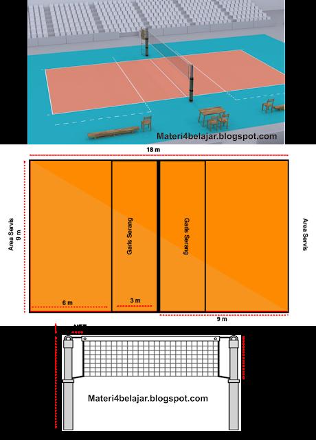 Ukuran Net Bola Voli Putri : ukuran, putri, Gambar, Ukuran, Lapangan, Standar, Nasional, Internasional, Semua
