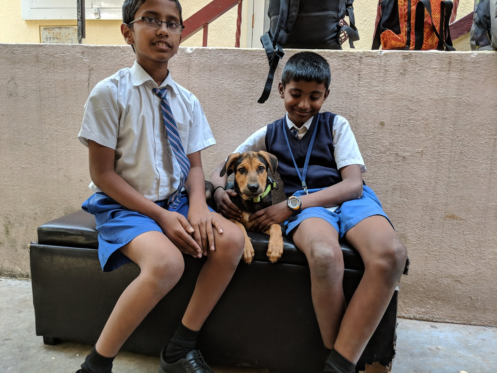 The school kids who became super friends with my puppy