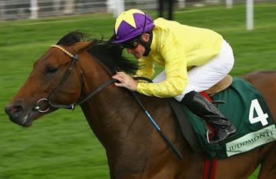 Sea The Stars Race Horse