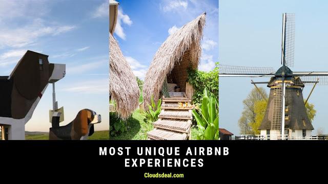 Most Unique Airbnb Experiences