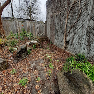 Toronto Back Garden Spring Cleanup Before in Riverdale by Paul Jung Gardening Services