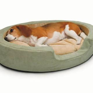 como ejegir camas para perros