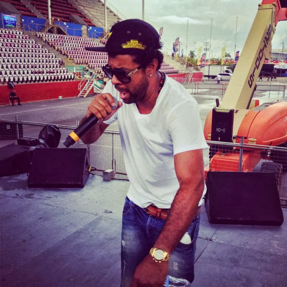 44 876 Deluxe Sting Shaggy: DISCOGRAPHY: (Reggae Singer