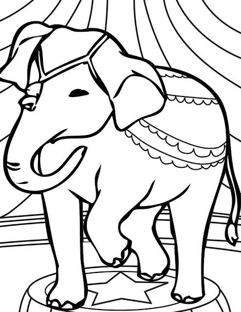Hình ảnh con voi tô màu