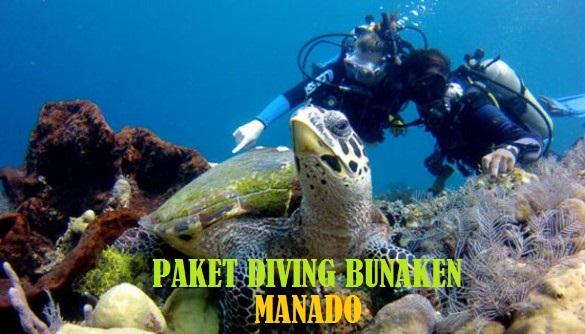 PAKET DIVING BUNAKEN MANADO MURAH
