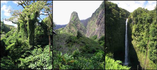 Akaka Falls, Hawaii, Iao Needle, Iao Valley, rainforest, rain forest, waterfall, green, blue