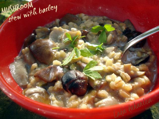Mushroom stew with barley by Laka kuharica: healthy mushroom goulash