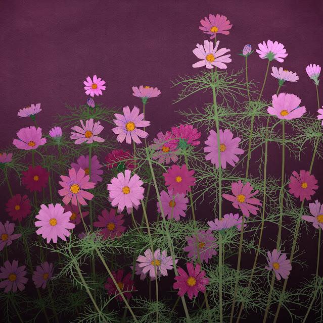 flores rosaceas, dibujadas