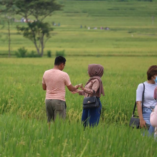 Geblek Menoreh View Yogyakarta