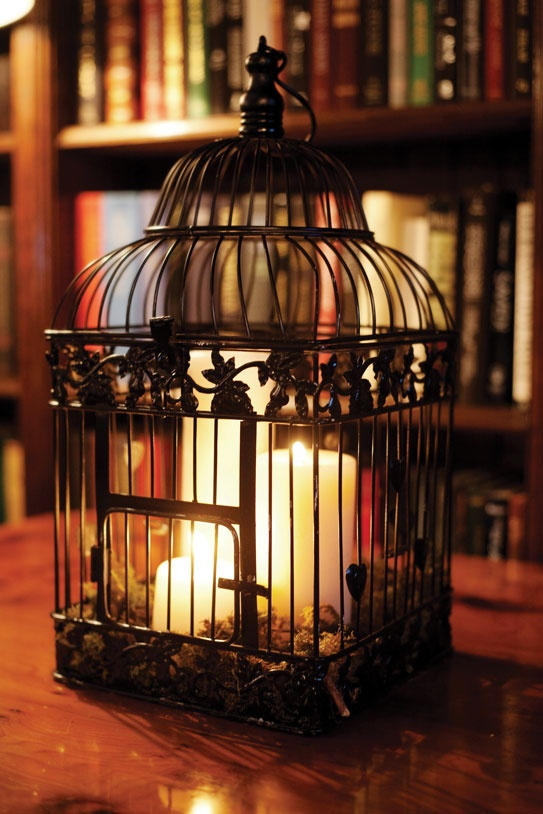 A candle in an antique bird cage is a fun centerpiece.