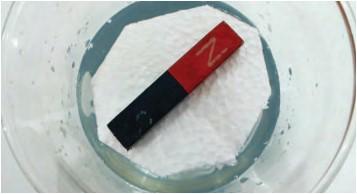 Magnet Batang yang Diapungkan