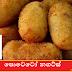 පොටෙටෝ නගට්ස් 🥔🥔🥔 (Potato Nuggets)