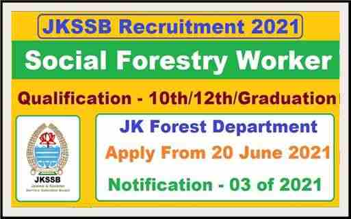 JKUT: JKSSB Social Forestry Worker Recruitment 2021   Check Eligibility Criteria   Forest Deptt (Current Job)