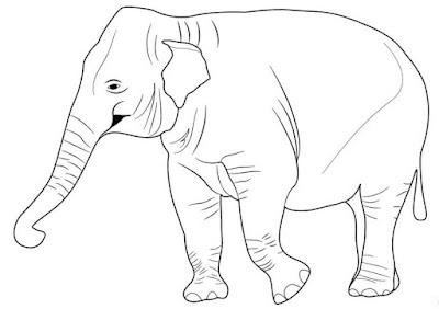 Gambar Ibu Gajah