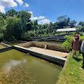Jumlah Permintaan Ikan Konsumsi di Yogyakarta Cenderung Stabil
