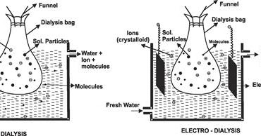 Purification of Colloidal Solutions │Chemistry Desk