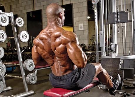تمرين سحب امامى تمارين عضلات الظهر للمبتدئين