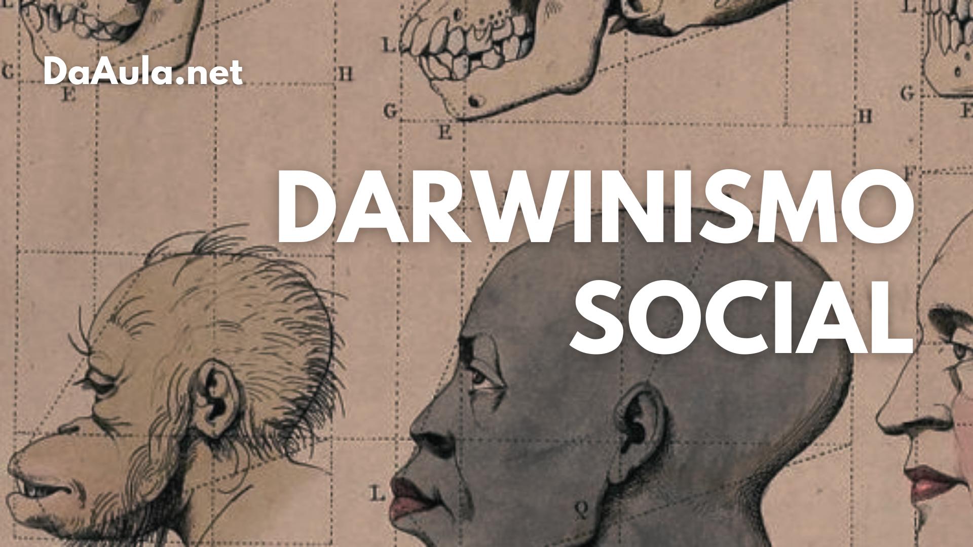 Entendendo o Darwinismo social