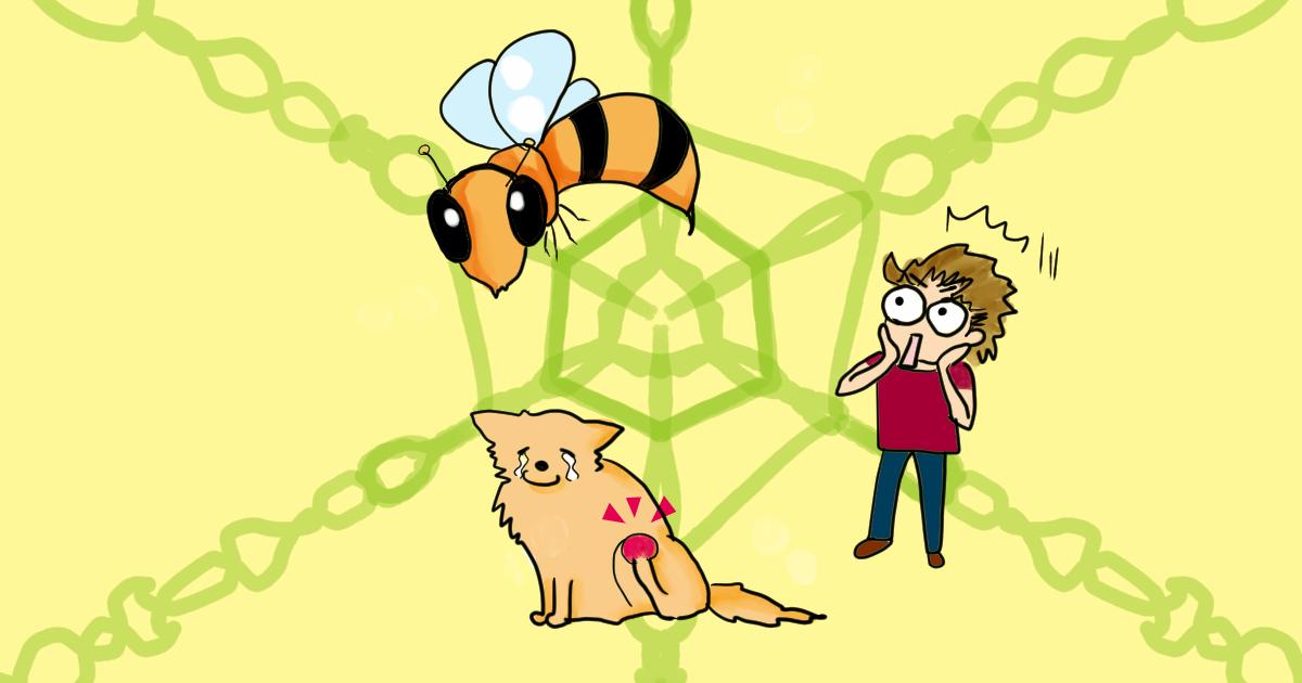 た の 時 に 対処 刺され 蜂