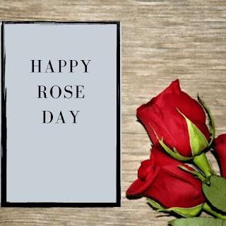 Red Rose Flower status