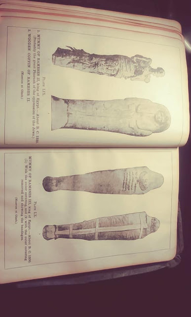 1800 Bible With Egyptian, Sumerian And Anunnakis Images? 10