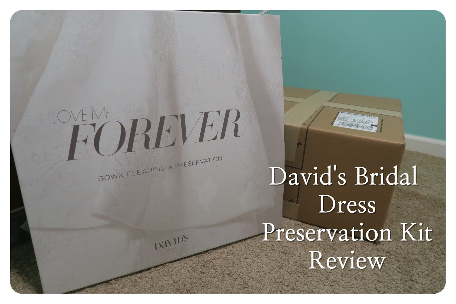 She\'s Wright : David\'s Bridal Gown Preservation Kit review