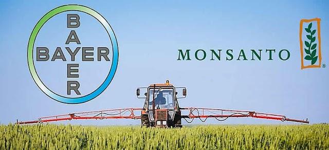 Condiciona COFECE concentración entre Bayer y Monsanto