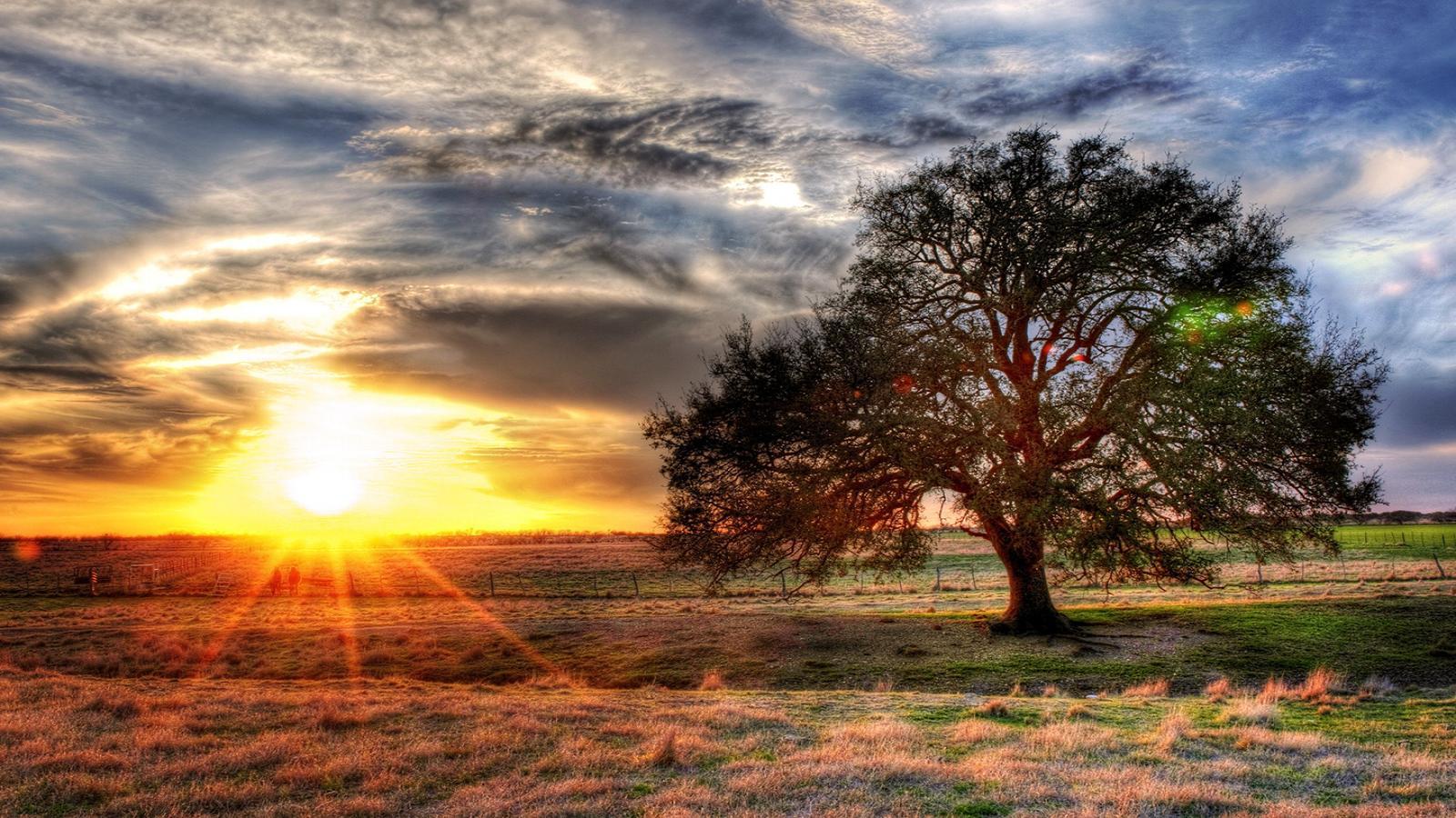 Gambar Matahari Terbit Kartun Pemandanganoce – Cuitan Dokter