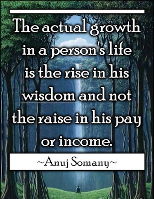 Best Quotes By Anuj Somany