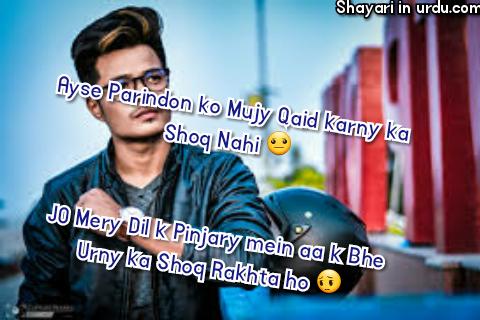 Dil Shayari | Ayse Parindon Ko Mujy Qaid Karny Ka Shoq Nahi