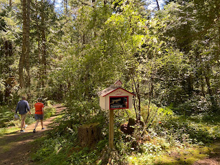 A path through the forest on Henry Island with a small book library kiosk.