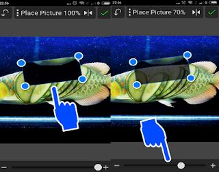 Cara Edit Foto Manipulasi Hewan