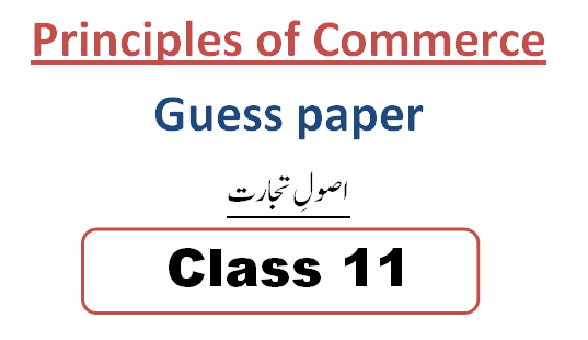 1st year principles of commerce guess paper 2021