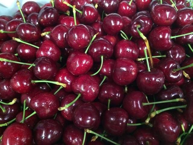 Cherry Úc nhập khẩu