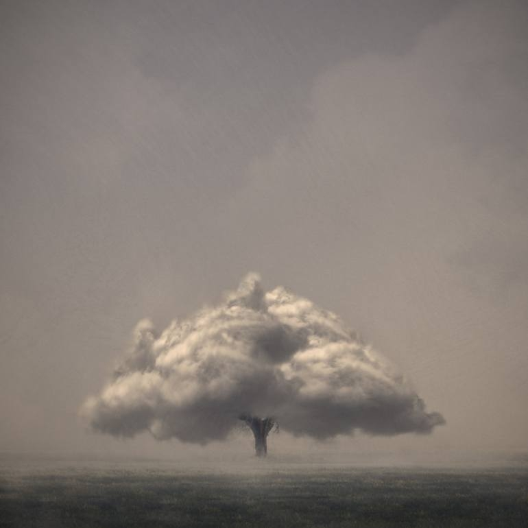 11-Cloud-Tree-Luigi-Quarta-Surrealism-and-Photography-come-Together-www-designstack-co