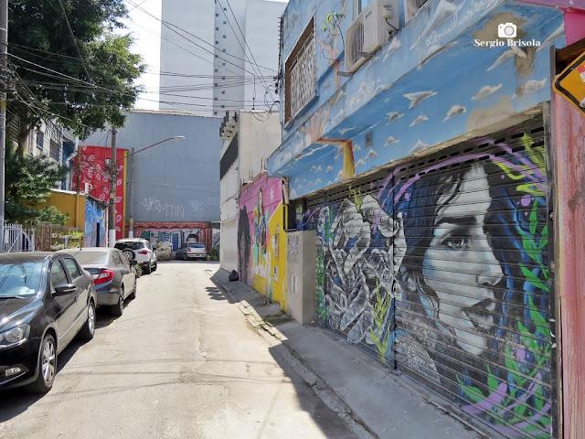 Vista de parte da Rua Olga Abujamra (Vila das Cores) - Vila Mariana - São Paulo
