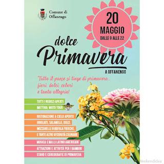 Dolce Primavera, fiori,dolci, e tanta allegria 20 maggio Offanengo (CR)