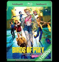 AVES DE PRESA (2020) WEB-DL 1080P HD MKV ESPAÑOL LATINO