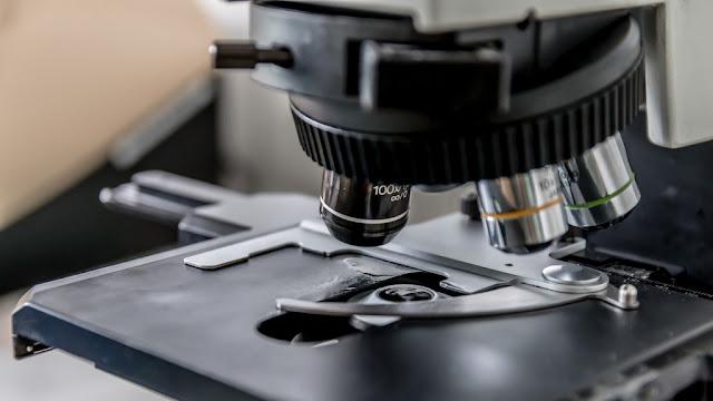 La Cámara Argentina de Biotecnología anunció inversiones por 700 millones de dólares