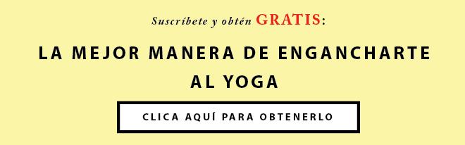 Videos Yoga Principiantes