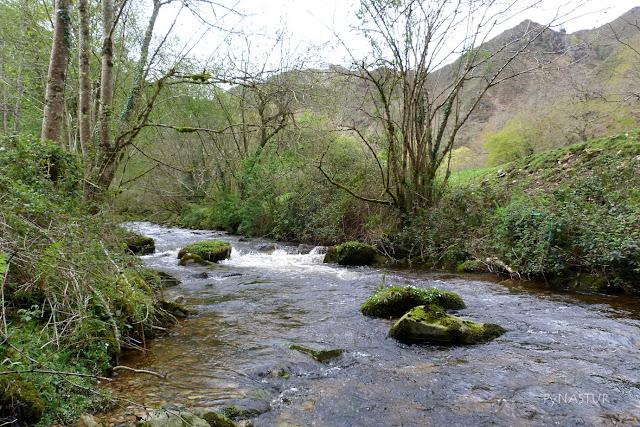 Río Color - Piloña - Asturias
