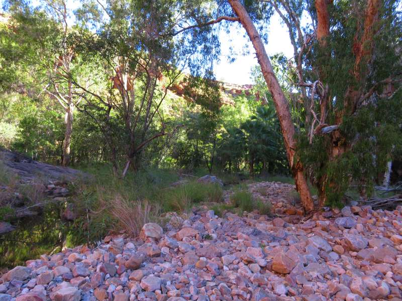 Amalia Gorge trail