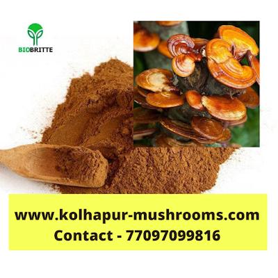 Uses of mushroom extracts
