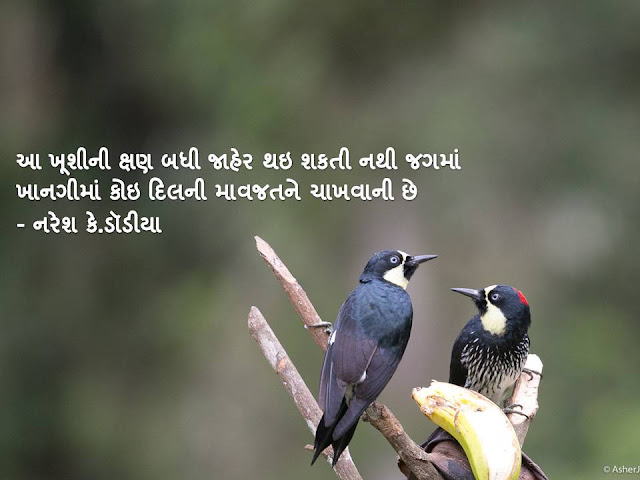 आ खूशीनी क्षण बधी जाहेर थइ शकती नथी जगमां Gujarati Sher By Naresh K. Dodia
