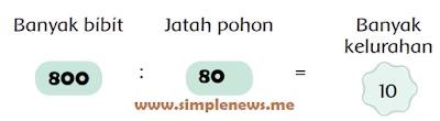 Banyak bibit Jatah pohon Banyak kelurahan www.simplenews.me